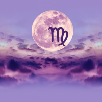 blog polna luna devica feb